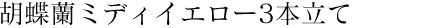 胡蝶蘭ミディイエロー3本立て