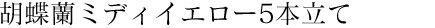 胡蝶蘭ミディイエロー5本立て