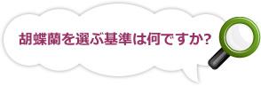 胡蝶蘭を選ぶ基準は何ですか?