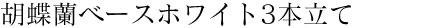 胡蝶蘭ベースホワイト3本立て