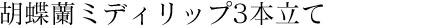 胡蝶蘭ミディリップ3本立て
